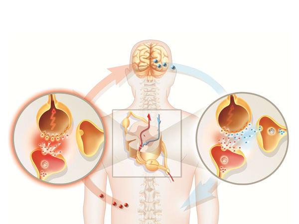 How do Gabapin benefit in Neuropathic pain & Epilepsy?