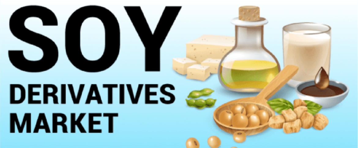 Soy Derivatives Market Size, Shares, Regional Segments and Forecast to 2021-2028