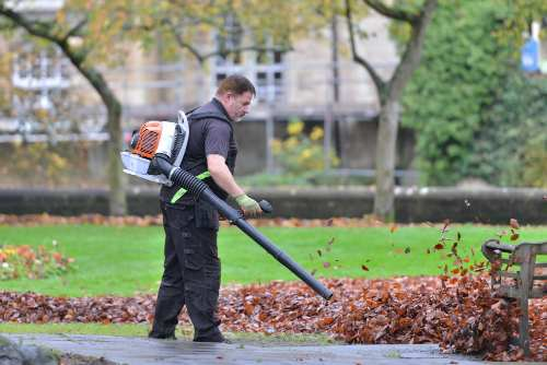How to Choose a Leaf Blower: 5 Steps to Follow