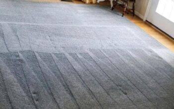 Arlington Carpet Cleaning VA