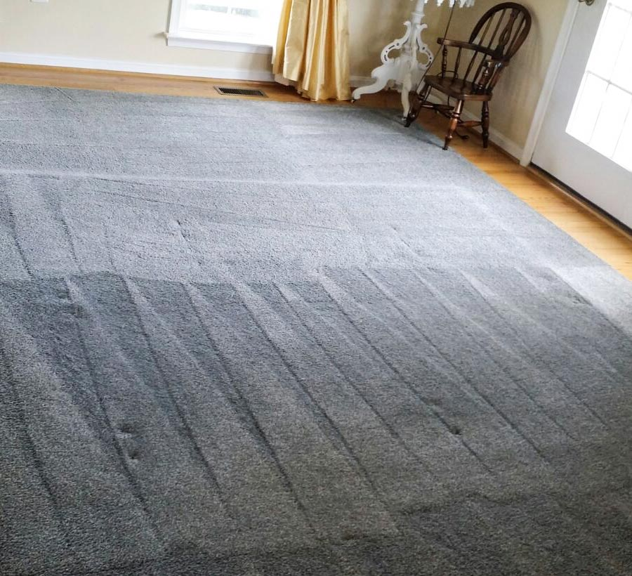 What Should You Know Before Hiring A Carpet Cleaning Company?